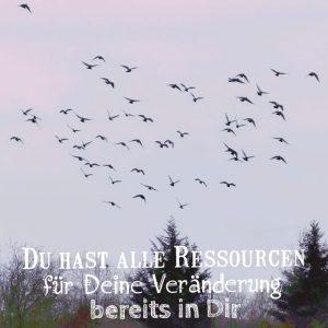 NLP Ressource