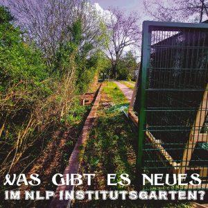 NLP Institut